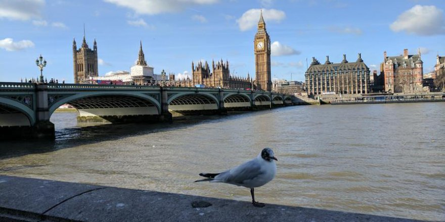 İngiltere'de ilginç ceza