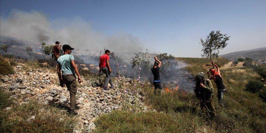 Yahudi yerleşimciler Filistinlilerin arazisini ateşe verdi