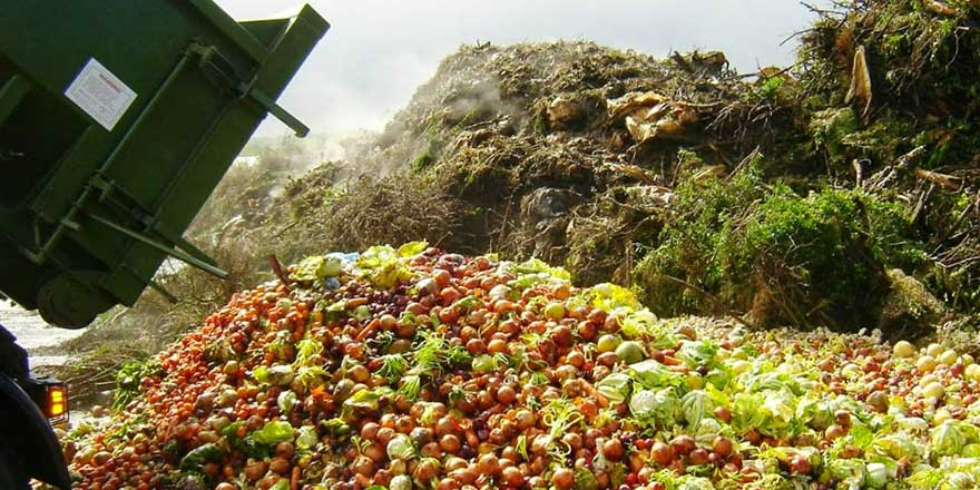 Gıdaların üçte biri, yani 1,3 milyar ton israf ediliyor