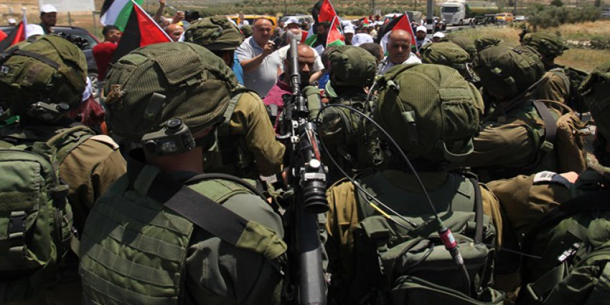 İsrail Batı Şeria'da zeytin fidanlarını söktü