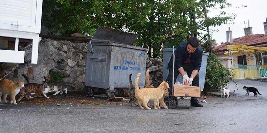 Üniversiteli Ebu Hureyre: Sokakları arşınlayıp kedileri besliyor