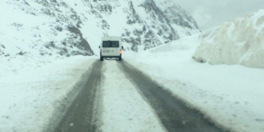 Van'a mayıs ayında kar yağdırıldı