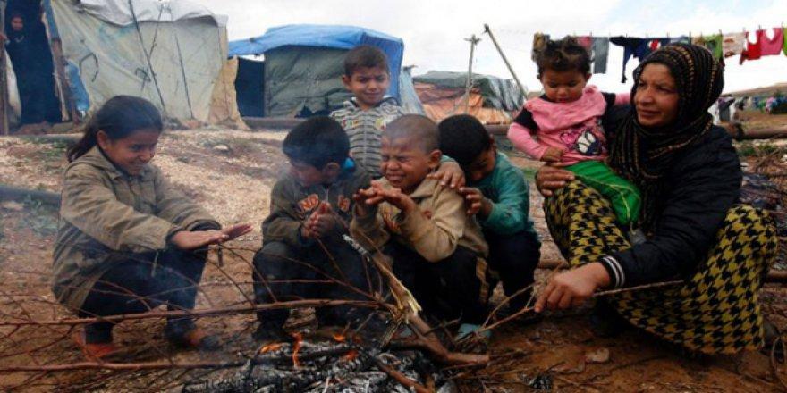 Yeni Zelanda'dan Suriyeli çocuklara eğitimde destek