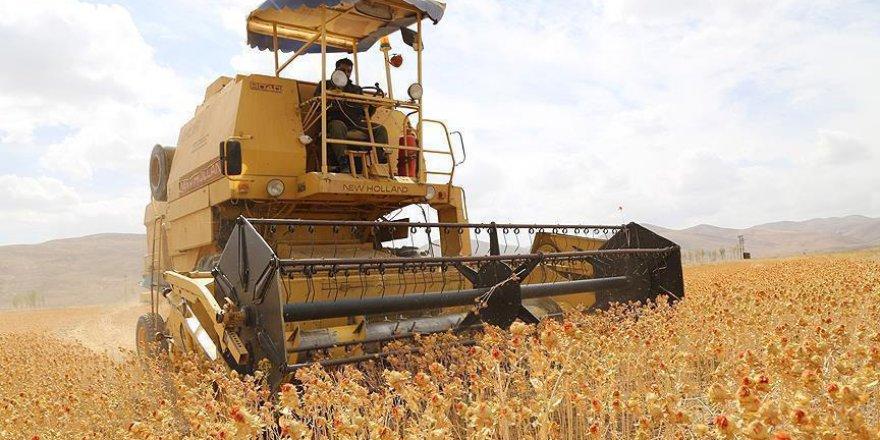 Çelik: 16 bin genç çiftçiye 483 milyon lira destek