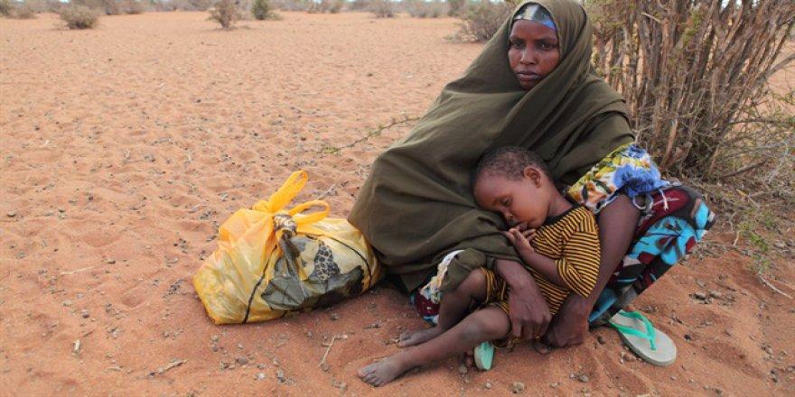 44 mülteci çölde ölü bulundu