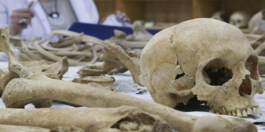 Eski Britanyalıların yamyam olduğu kanıtlandı