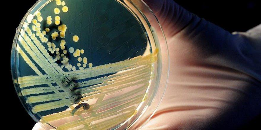 Hastalıklı dokuları aydınlatan nano-bileşke üretildi