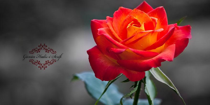 Garip ve kimsesizlerin dost ve yardımcısı Allah ve Resulüdür