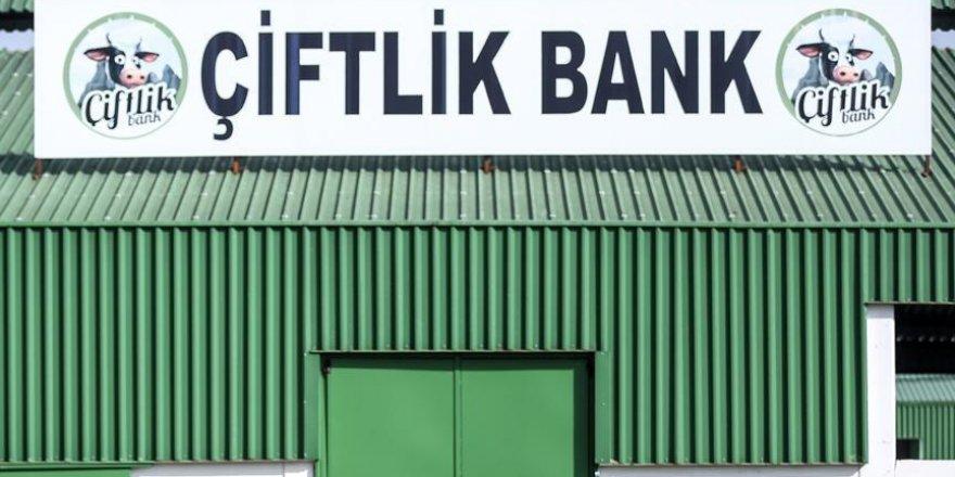 Çiftlik Bank sanığı Mehmet Aydın'ın yazışmaları ortaya çıktı