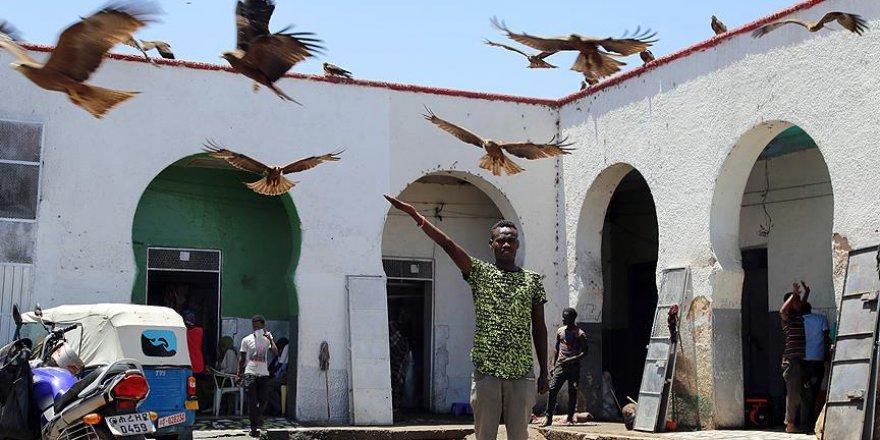 Etiyopya'nın evliyalar şehri Harar