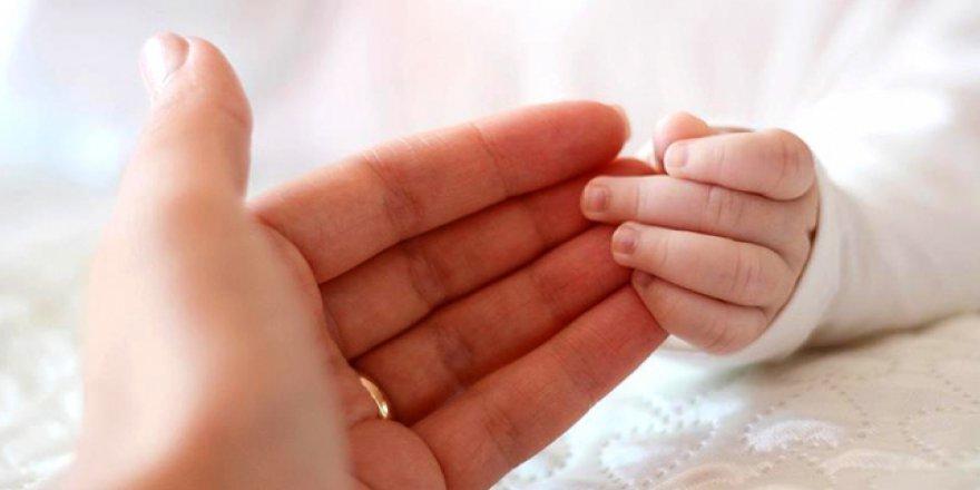 Yaşamın ilk döneminde annesiz kalmak, beyin fonksiyonlarını olumsuz etkiliyor