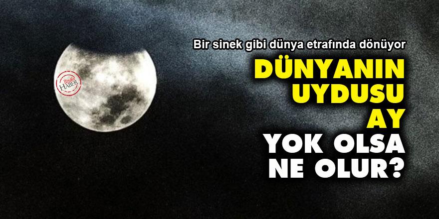 Dünyanın uydusu Ay, yok olsa ne olur?