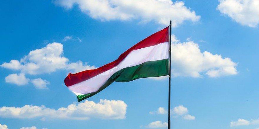 Macaristan, Soros'a savaş açtı
