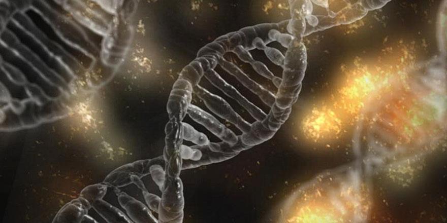 Ömür süremiz DNA'mıza gizlenmiş iddiası