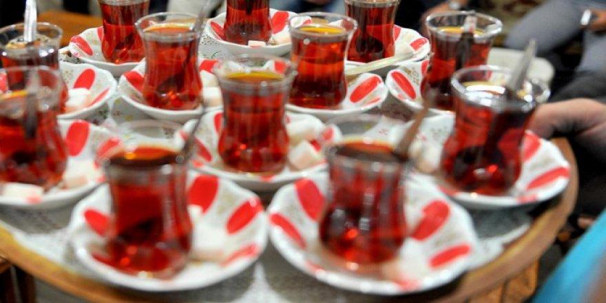 Doğu Karadeniz'de çay bereketi