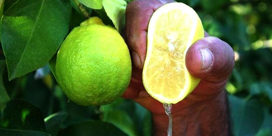 Kainat eczanesinden birkaç damla limonu bileğinize sıkın!