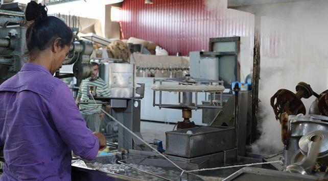 Diyarbakır'da ipek böcekçiliği yeniden canlandı