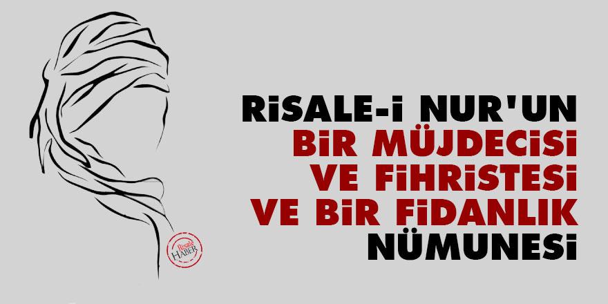 Bediüzzaman: Risale-i Nur'un bir müjdecisi ve fihristesi ve bir fidanlık nümunesi