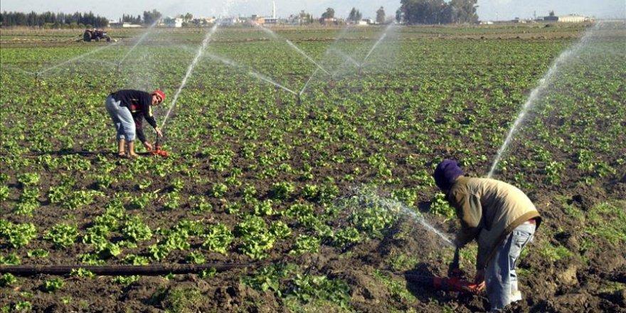 Van'da çiftçilerin su sevinci