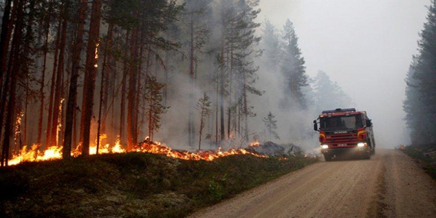 İsveç'te orman yangınları durdurulamadı
