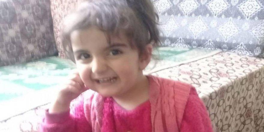 Tokat'ta kaybolan küçük Evrim'i arama çalışmaları sürüyor