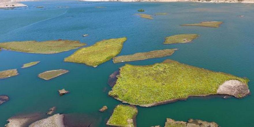 Adıyaman'ın Çelikhan ilçesindeki yüzen adalar 'sos' veriyor
