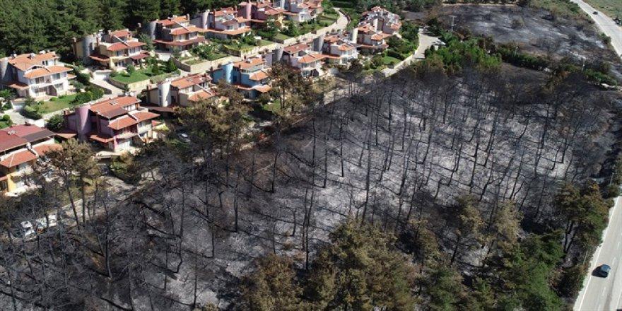 Bursa'daki yangının nedeni izmarit olabilir