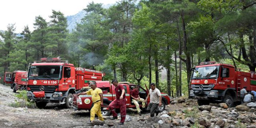 Orman işçileri yangınlara anında müdahale ediyor