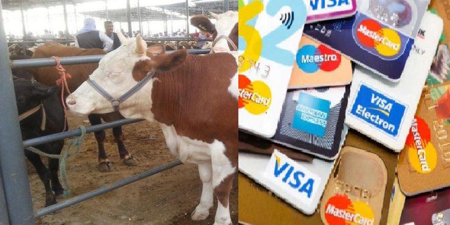 Kredi kartı ile kurban kesmek caiz mi? Diyanet açıkladı