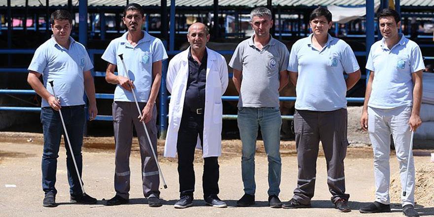 'Kaçan kurbanlıkları yakalama timi' işbaşında