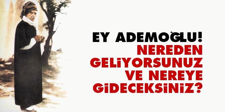 Bediüzzaman: Ey Ademoğlu! Nereden geliyorsunuz ve nereye gideceksiniz?
