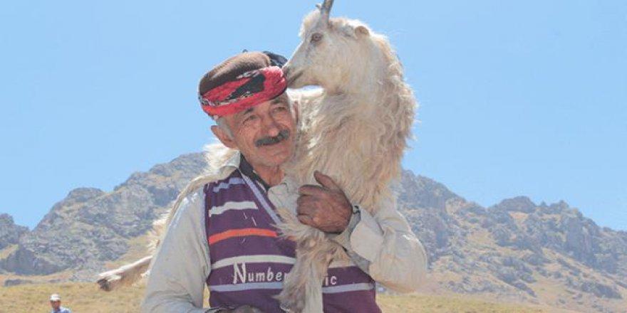 Yüksek rakımlı köyde 'Kuzu Kırpma Şenliği'