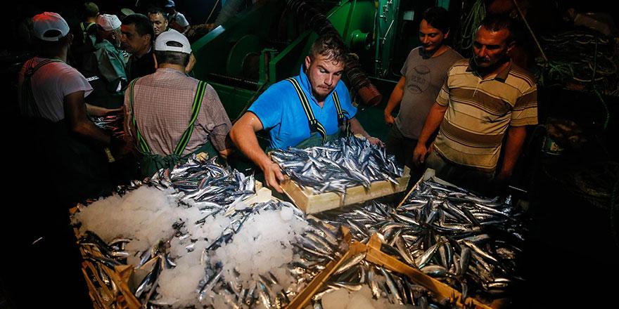 Balıkçılara destek ödemeleri başladı