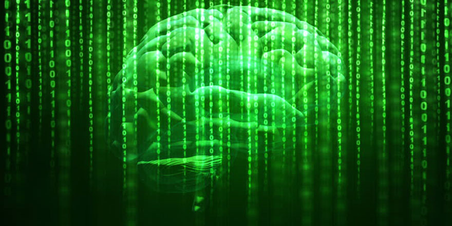 Beyne sinyal ile bilgi yükleme başarılı oldu