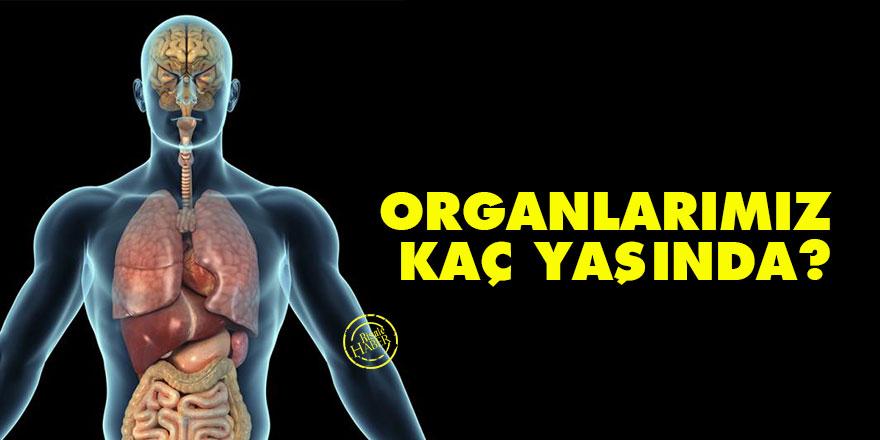 Organlarımız kaç yaşında?