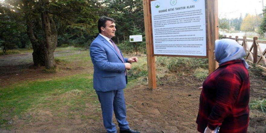 Uludağ endemik parklarla dünyaya açılacak