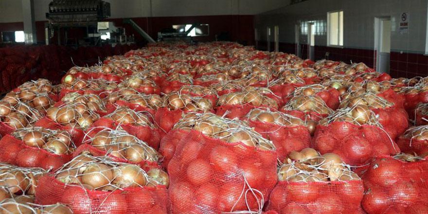 Tarım Bakanlığı'ndan 45 soğan deposuna denetim