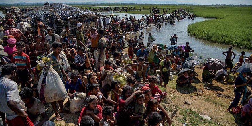 Arakanlıların yerleşmesi düşünülen topraklar tehlike saçıyor
