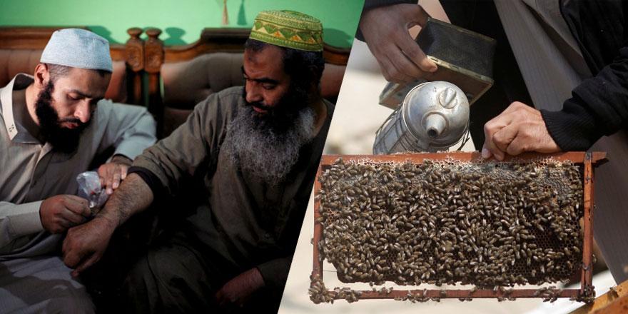 'Kur'an'da geçiyor' dedi arı ile tedaviye başladı