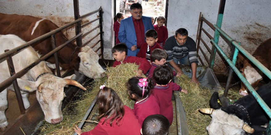 Haftanın bir günü dersleri köy okulunda yapıyor