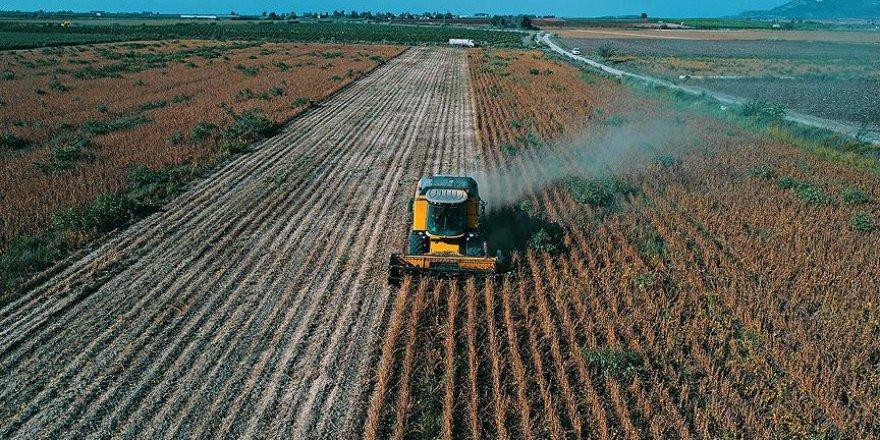 Çiftçiye 490 milyon liralık destek ödemesi yapıldı