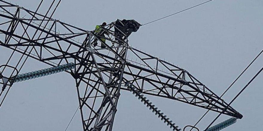 Diyarbakır'da aşırı yağış elektrik direklerini devirdi