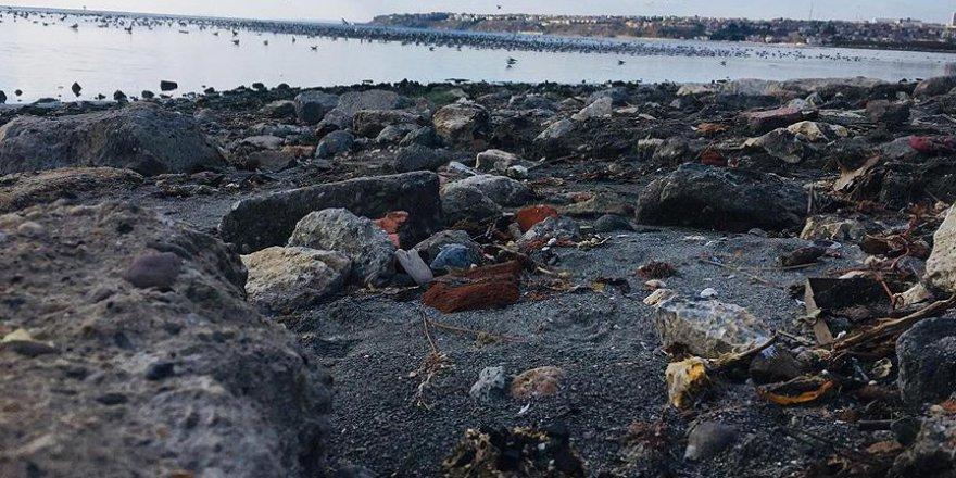 Silivri sahilinde endişe veren görüntü