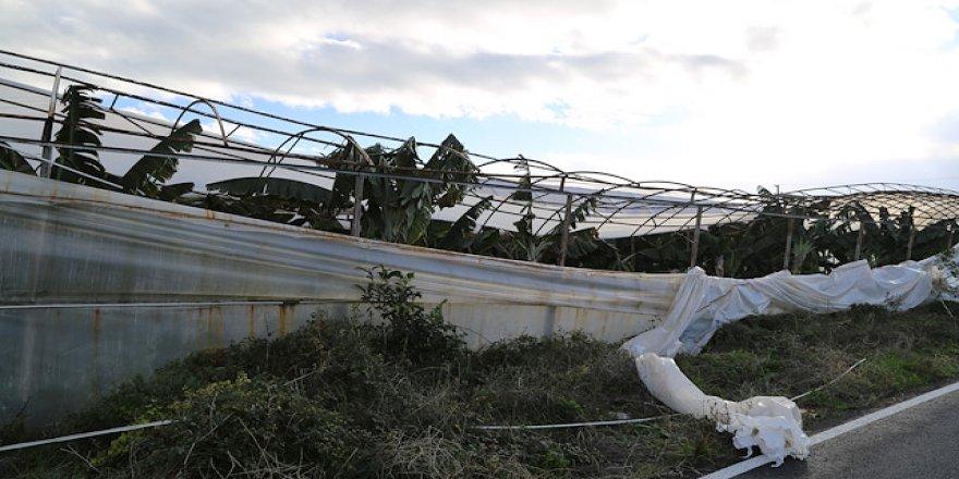 Antalya'da hortum ve fırtına tarım alanlarına zarar verdi