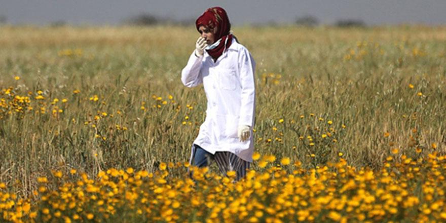The New York Times: İsrail, Razan hemşireyi özellikle öldürdü