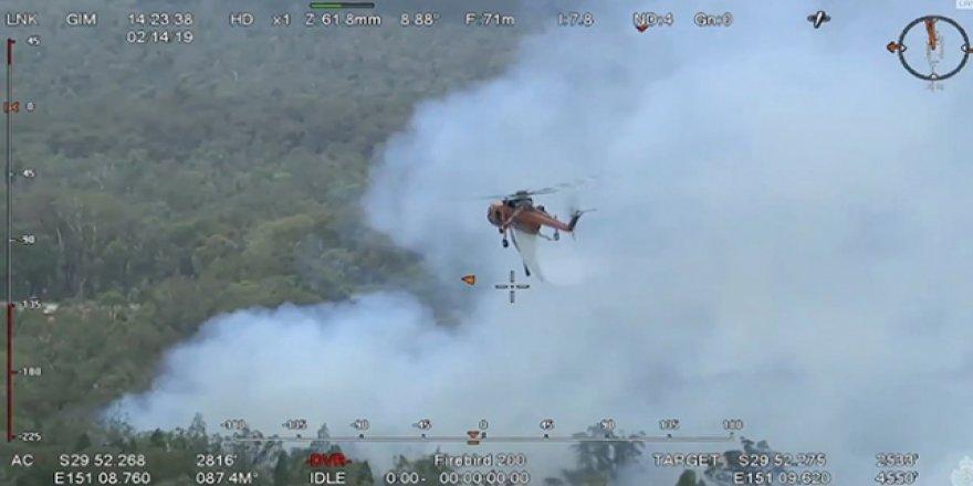 Avustralya'daki yangında binlerce hektarlık alan zarar gördü