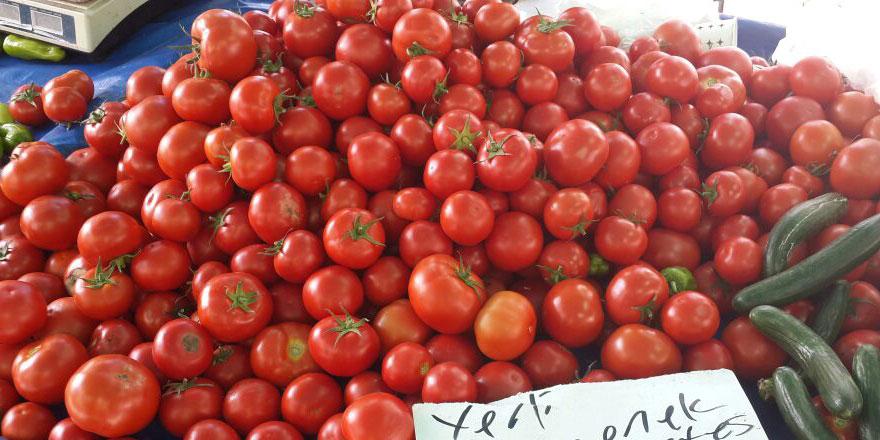 Rusya'ya en çok domates ihraç edildi