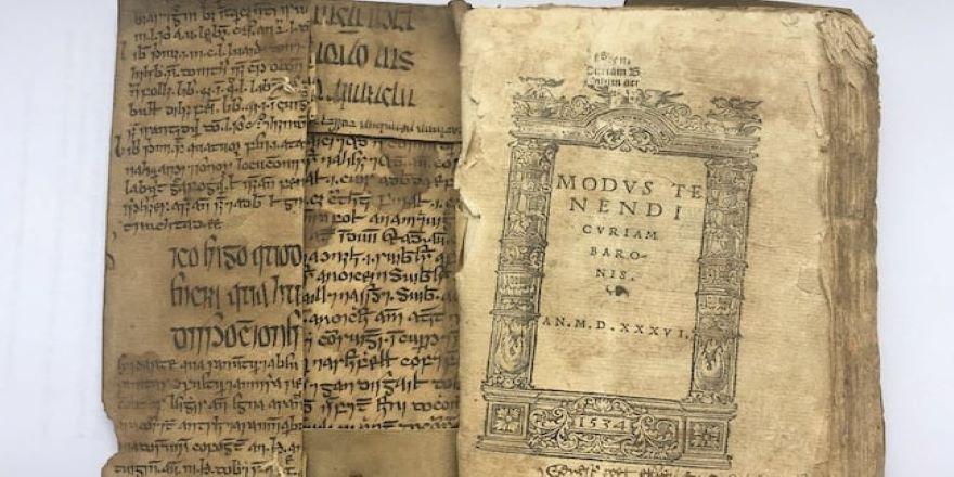 İbni Sina'nın 15. yüzyıldan kalma Tıbbın Kanunu eserinin İrlanda diline çevirisi bulundu