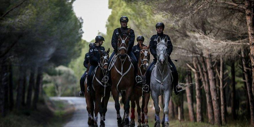Tarihi Yarımada atlı birliklere emanet