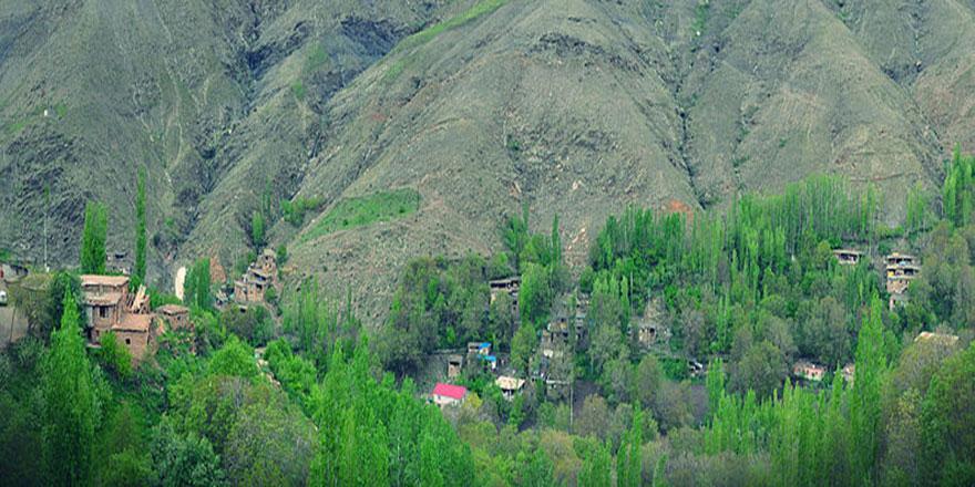 Küçük bir köyden dünyaya nur saçan âlim: Üstad Bediüzzaman